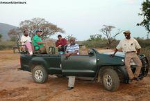 Safari blogs