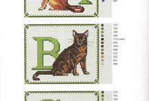 Katten borduren met Francien