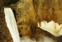 Yellowstone / by Danielle Andes