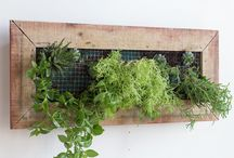 Wall Planter / Handmade wooden wall planters and garden pot plant stands.