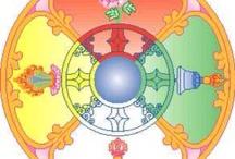 Circular/Mandala