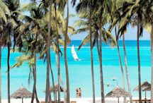 Zanzibar Honeymoon / Incredible beauty, one of the most beautiful beaches in the world, the No.1 Suggestion for honeymoons and those who love beach and aquatic.