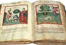 ogród średniowieczny