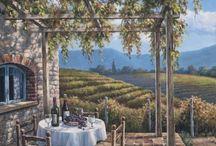 vineyard / vinica