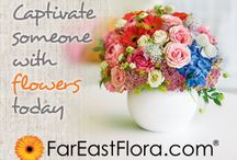 Gifts and Flowers Voucher Codes / Send gifts, flowers and bouquets to your love one, relatives on different occasions at economical prices.