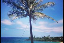 Destination Beaches on Oahu / This board is pictures of beaches to visit while on vacation :)