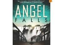 Angel Falls - Book Info / All the latest info on Angel Falls, my new romantic supsense from Abingdon Press