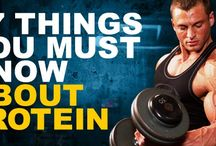 Protein / by Fitness Fuel Training