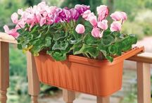 Gardening - Plant Containers