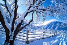 Let It Snow~Let It Snow~Let It Snow..... / winter wonderlands, etc. / by Glenda Roslund