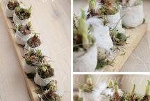 Kreativ med blomster