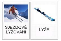 zimne športy