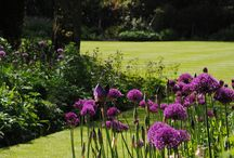Bahçe peyzaj mimari