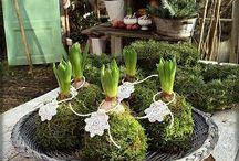 spring flower ideas