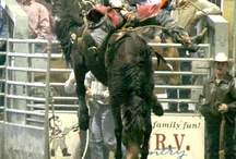 Leduc Black Gold Rodeo / Annual Pro Rodeo in Leduc, AB   Featuring Pro Rodeo events, Trade Fair, Live Entertainment, Cabaret, Fun Activities for Kids, Midway and Parade.