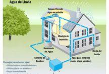 Deco - Sustentable - Ecologico
