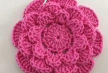 rosa rasteira