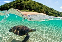 #EscapeWithHT / My dream vacation getaways! #HawaiianTropic #EscapeWithHT