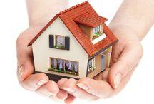 Property & Realestate