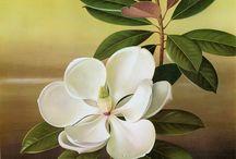 fiori olio
