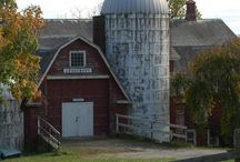 Barns / by Lynn White