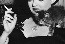 Vintage Stars & their Pets / by Tallulah Bea