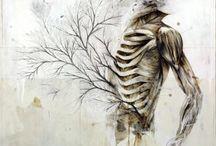 Inside, Outside & In-between - Human Anatomy