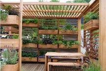 My Garden & Inspirations!
