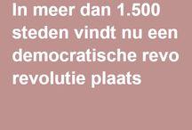 democratie / artikelen en boeken tbv de discussie rond Nederland Leest