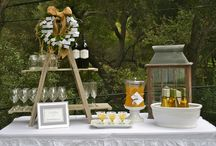Entertaining ideas and party ideas / Lets have people over and have a party! / by Barbara Fertig