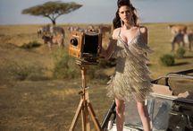 safari shoot