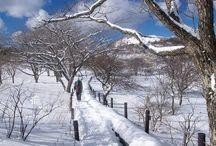 霧ヶ峰(八ヶ岳)登山 / 霧ヶ峰の絶景ポイント 八ヶ岳登山ルートガイド。Japan Alps mountain climbing route guide