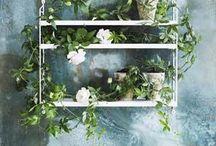 Decor ideas with plants