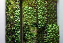 vertikalna zahrada