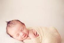 Newborn Photography / by Sina Mizrahi