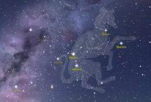 Sirius Starseed