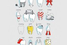 all about dentist