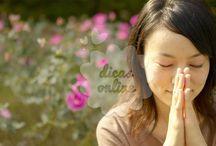 oraciones /orações / frases / orações etc....