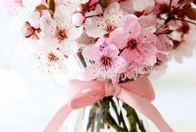 Конструктор цветочного бизнеса Папка №1