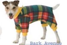 bidorbuy Pet Fashion