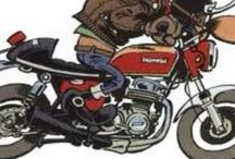 Honda CB 900 Bol d'or