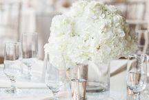 Stephanie Motal Wedding