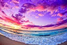 Paradise ☯