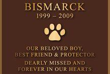 Pet Plaques / Cast Bronze plaques for pet memorial from Franklin Bronze Plaques.