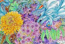 Colouring - Floribunda