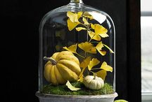 Ideas, cuadros.