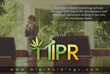 MIPR Holdings / MIPR Holdings is a cannabis-related consulting services company fostering in the development and growth of businesses seeking to tap into the marijuana space.