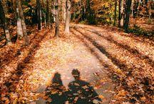 I just really love fall