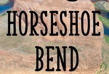 horseshoe bend + antelope