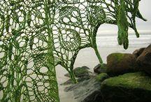 craftiness / by Erin Brandy